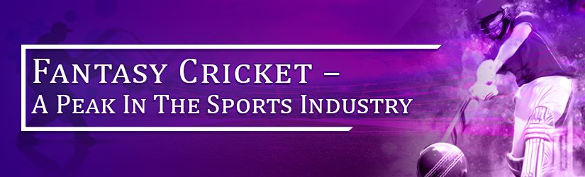 Fantasy Cricket – A Peak In The Sports Industry