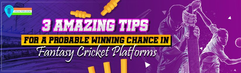 3 Amazing Tips for A Probable Winning Chance in Fantasy Cricket Platforms
