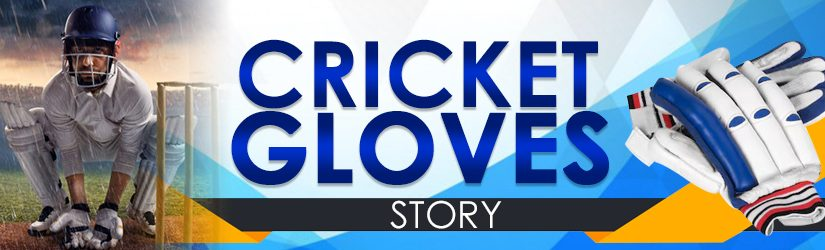 Cricket Gloves Story