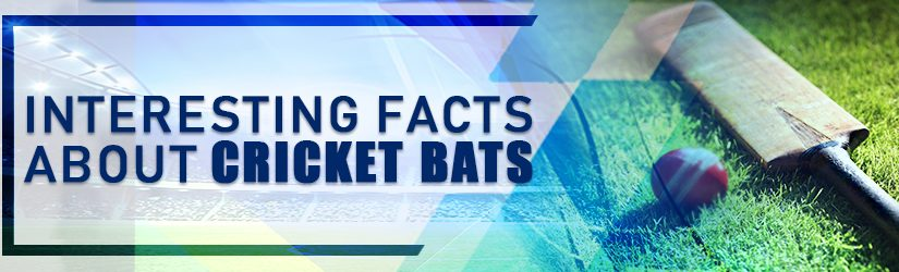 Interesting Facts About Cricket Bats