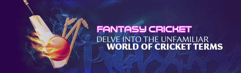 Fantasy Cricket – Delve into the Unfamiliar World of Cricket Terms