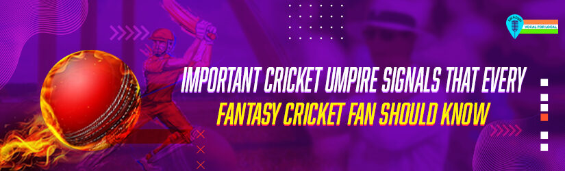 Important Cricket Umpire Signals that Every Fantasy Cricket Fan Should Know