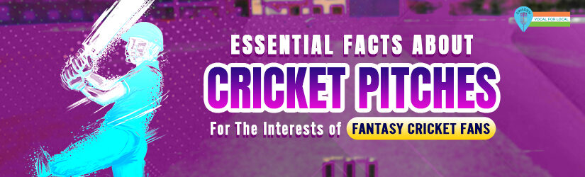 Essential Facts About Cricket Pitches For The Interests of Fantasy Cricket Fans